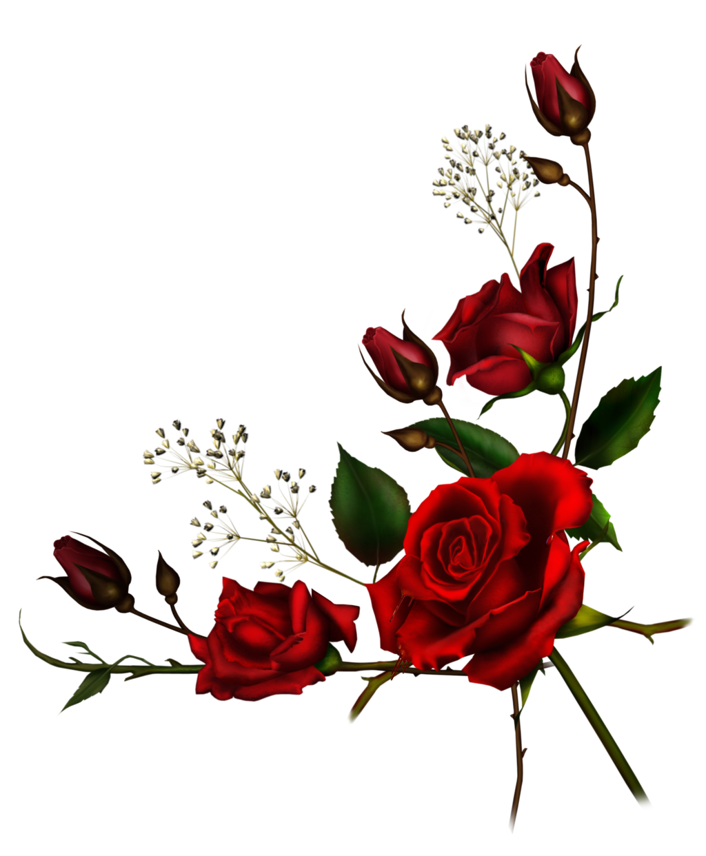 Transparent_Red_Rose_PNG_Clipart_Picture.png (3087×3078
