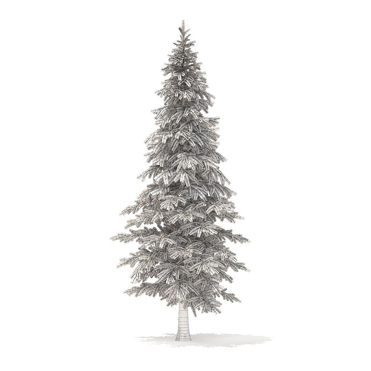 Fir Tree 3d Model 4 5m Fir Tree Tree Wedding Design Inspiration