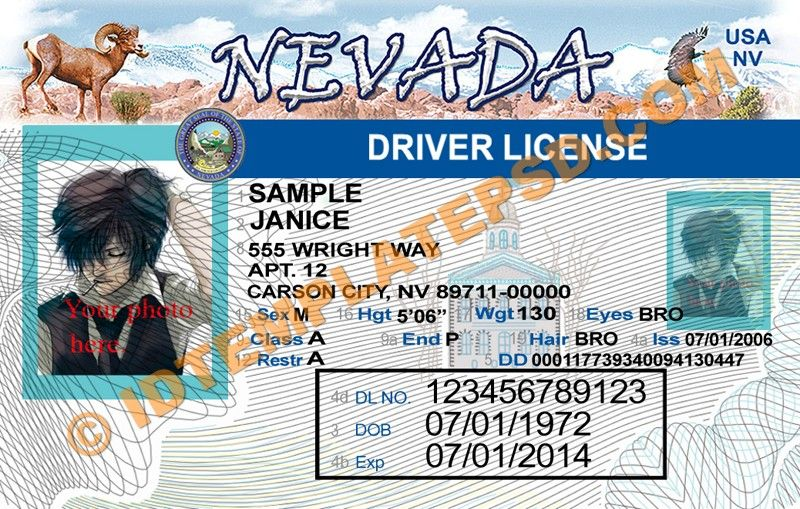 this is nevada  usa state  drivers license psd  photoshop