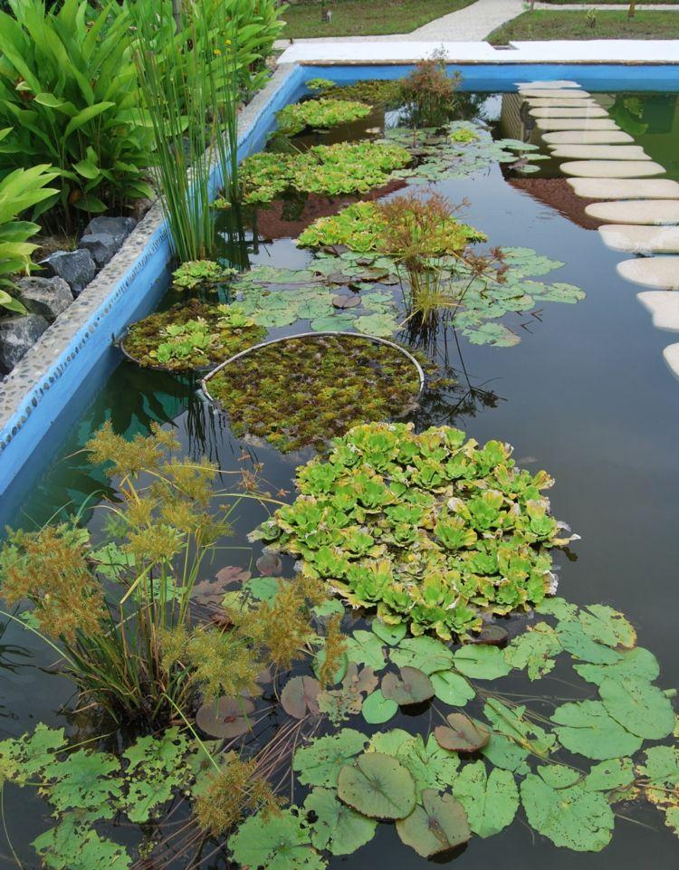 gartenteich im blumentopf, gartenteich-pool-anlegen-blumentopf-wasserpflanzen-trittsteine, Design ideen