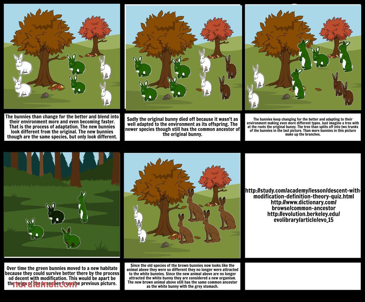 16 Worksheets How Plants Adapt To Habitat Esl Worksheets