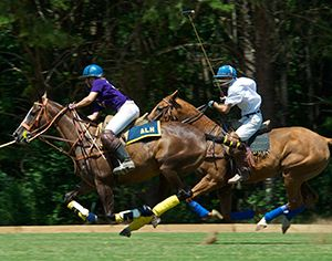 Chukkar Farm Polo Club Sunday Polo Matches 1140 Liberty Grove Rd. Alpharetta, Georgia 30004         (770) 664-1533     (770) 833-1283