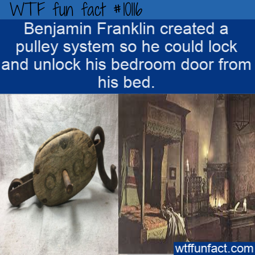 WTF Fun Fact – Pulley System (WTF Facts : funny & weird facts) #historyfacts