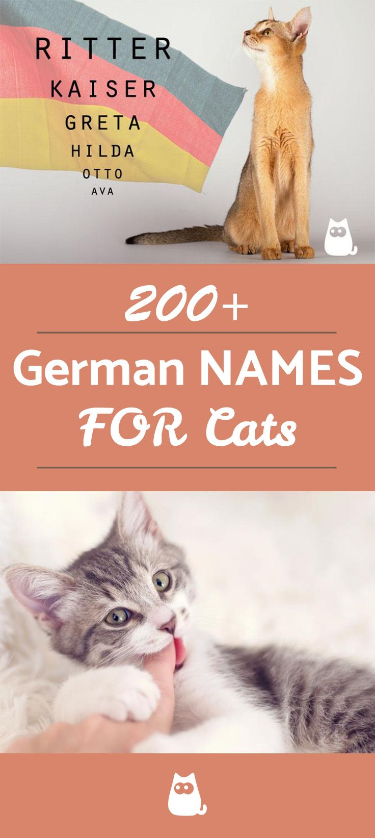 200+ German Names for Cats