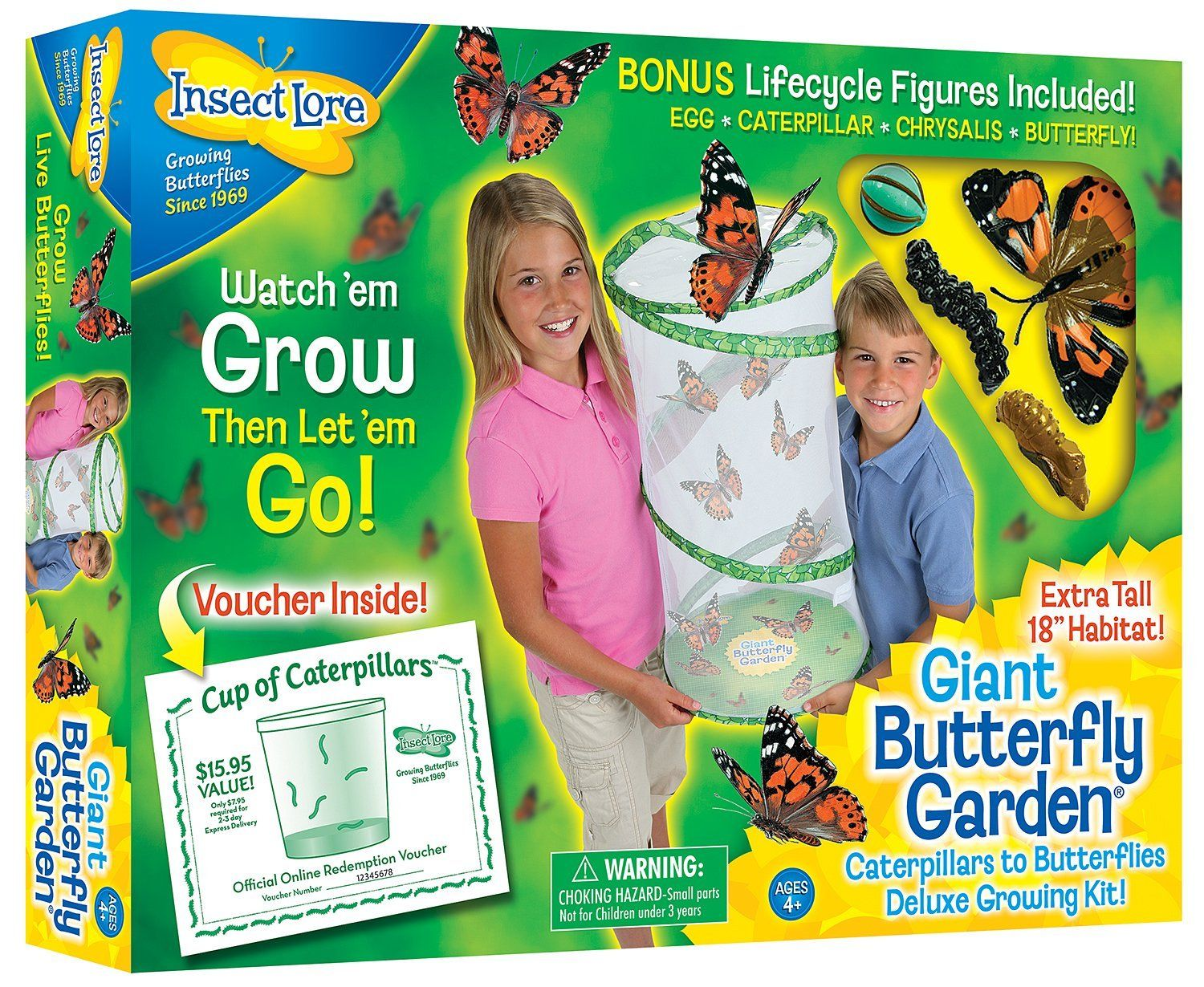 Giant Butterfly Garden: Insect Lore: Amazon.co.uk: Toys & Games