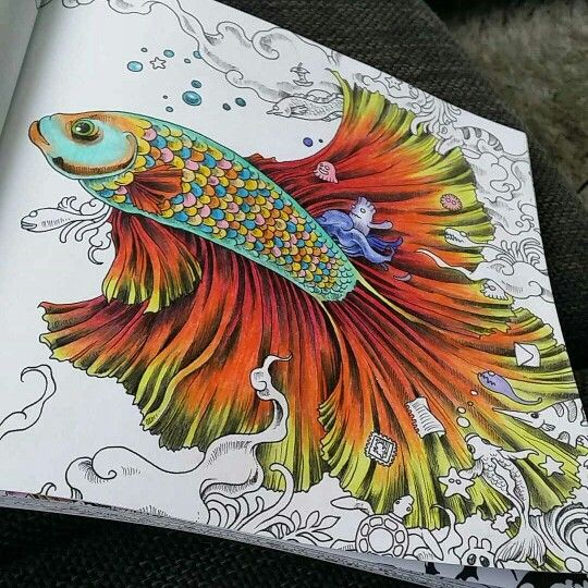 Animorphia Mais Coloring BooksAdult