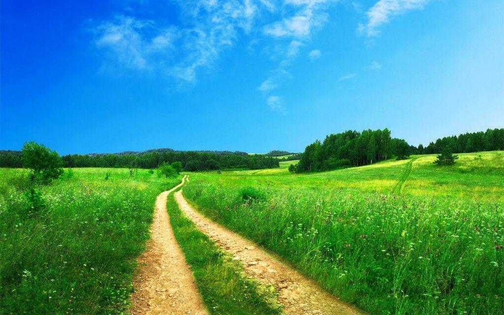 Lush Green Scenery Landscape HD Desktop Wallpaper ...