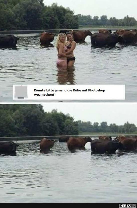 Könnte bitte jemand die Kühe mit Photoshop wegmachen ...