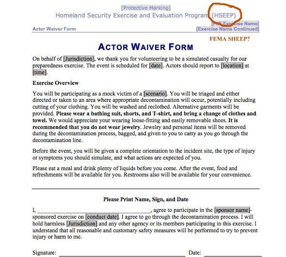 This is a FEMA Disaster Acter Release form for their terror - fema application form