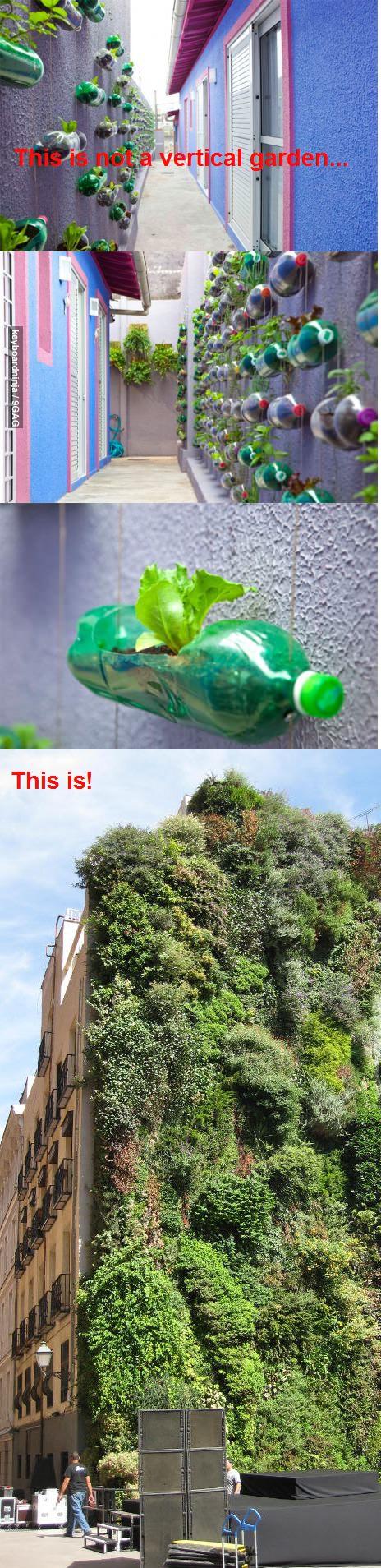 Vertical garden:-)