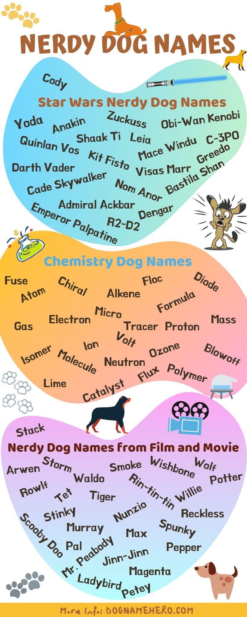Nerdy Dog Names Best Geeky Dog Names Dog Name Hero Dog Names Nerdy Dogs