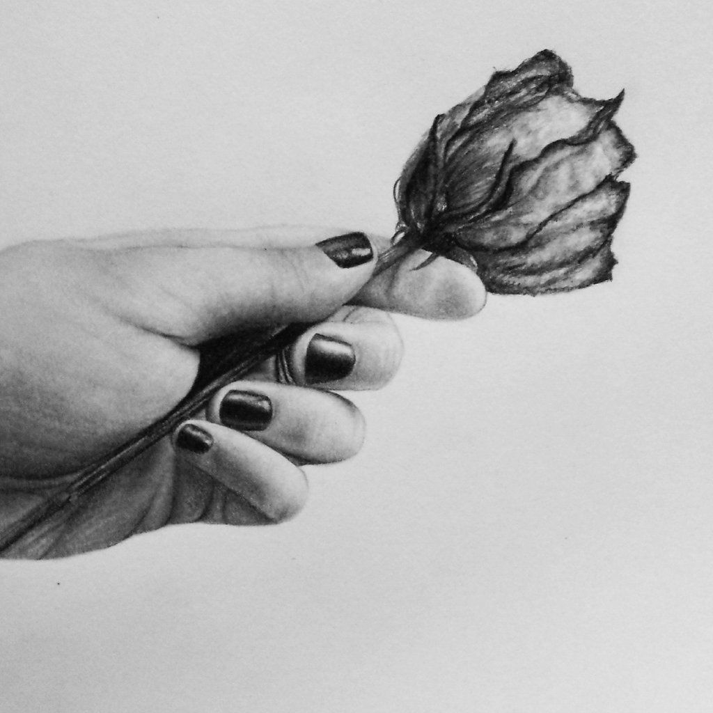 Hand Holding A Rose By Xluciintheskyx On Deviantart Hand Holding Rose Rose Sketch Rose In Hand