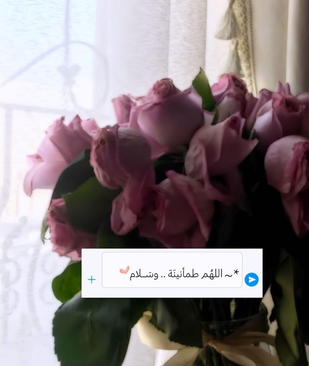 Pin By Lana E On صباح الخير Words Quotes Plants Allah
