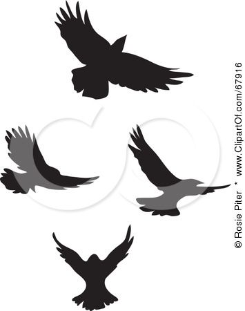 Flying Bird Silhouette Tattoo Royaltyfree Rf Clipart Illustration Of A Digital Collage Of 18591 Jpg Bird Silhouette Tattoos Bird Silhouette Flying Bird Tattoo