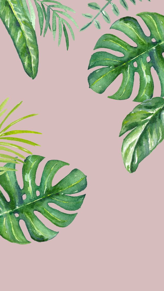 DLOLLEYS HELP iPhone 5s Jungle Leaves Wallpapers Iphone