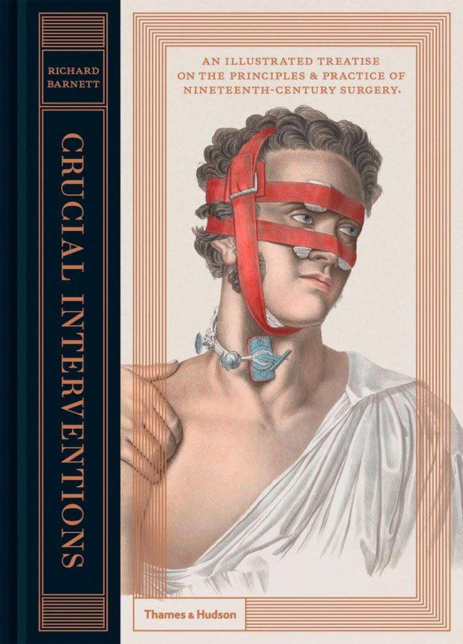 vintage medical anatomy illustration   Medical anatomy