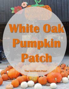 White Oak Pumpkin Patch