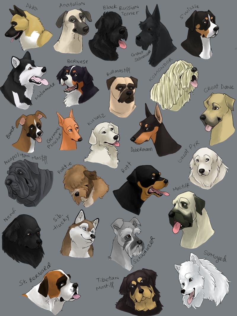 dog icons WORKING GROUP by *shelzie on deviantART Dog