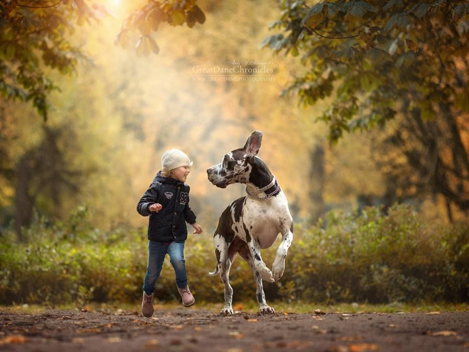"""""""Little Kids and their Big Dogs.jpg (960×720)"""