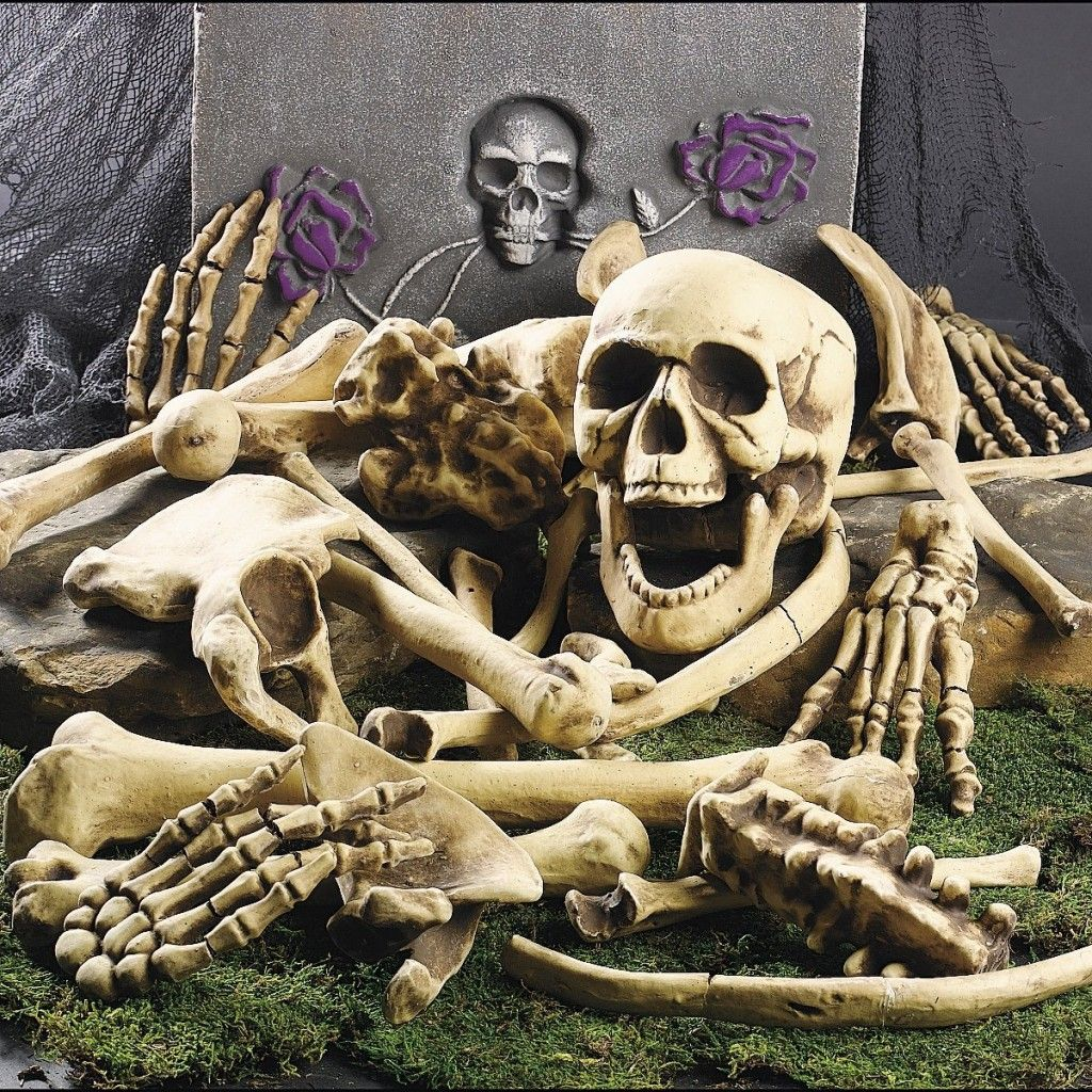 outdoor halloween decorations bag of skeleton bones - Skeleton Halloween Decoration