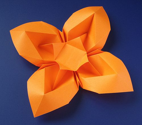 Fiore bombato 3 - Curved flower 3 | Flickr - Photo Sharing!