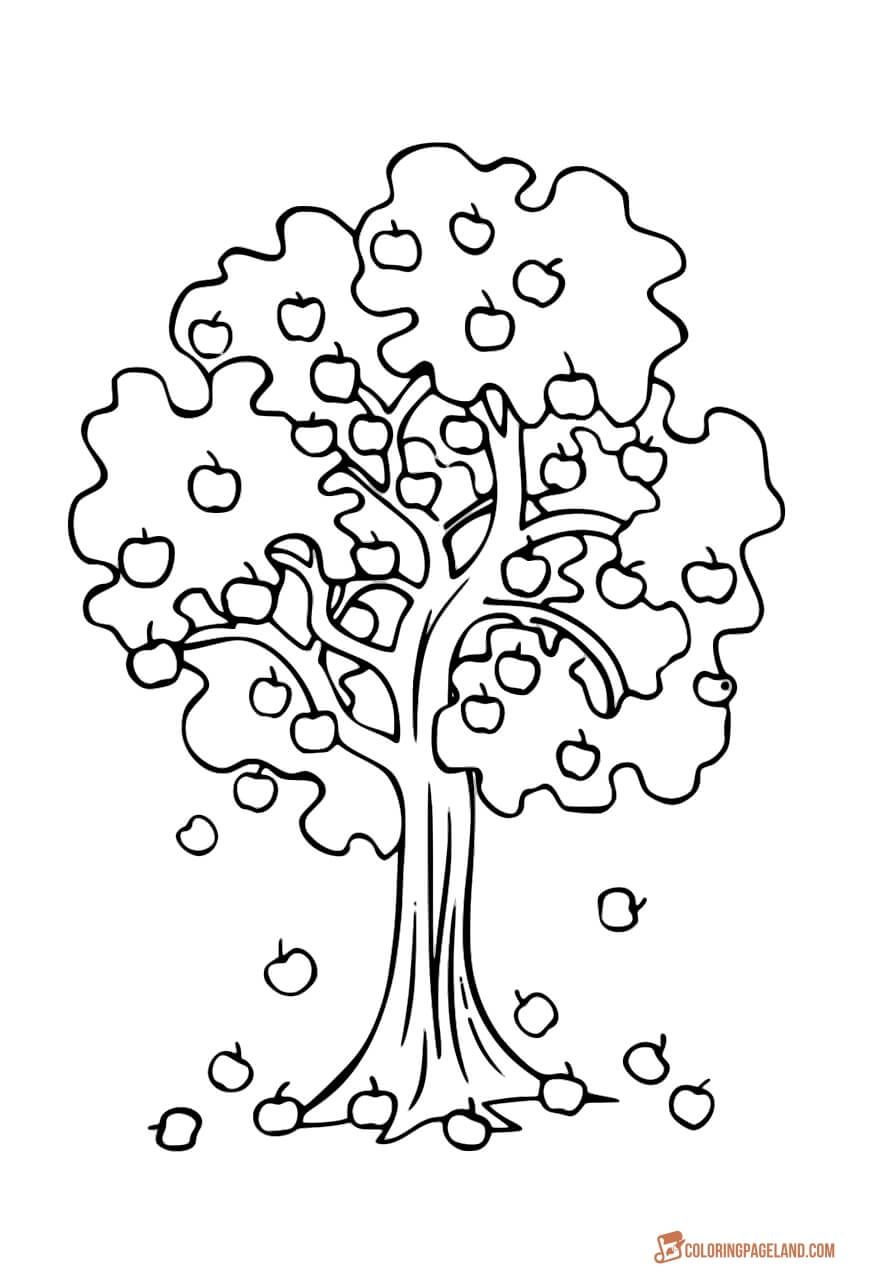 Apple Tree Coloring Pages Downloadable And Printable Collection Tree Coloring Page Fall Coloring Pages Apple Coloring Pages