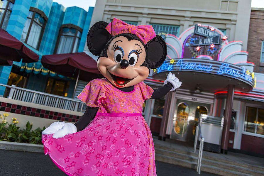 Hollywood and Vine Walt Disney World