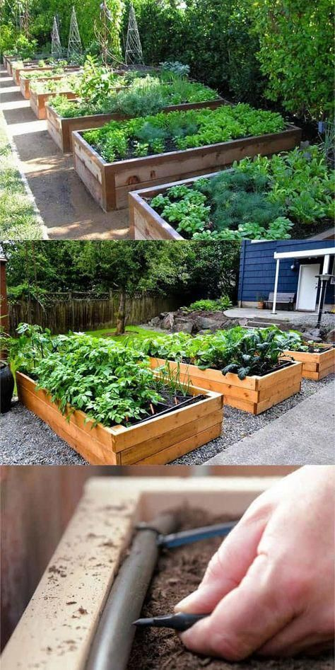 Detailed guide on how to build raised bed gardens! Lots of