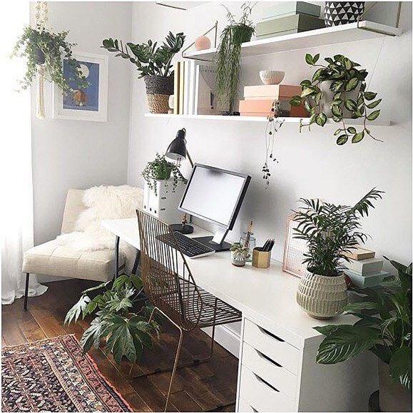 Dream Workspace. White Desk, Plants + A Persian Rug