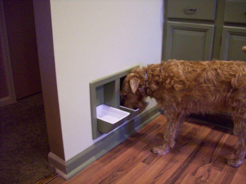 Home Designer Pet Eatery Pet Bowls Dog Food Recipes Animal Design