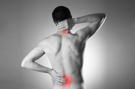 I think you need a #vacation ...from #inflammation #vacation #inflammation #pain #backpain #arthritis https://plus.google.com/+MichaelTamezTransformativeNutrition/posts/DbgTxUYYxig