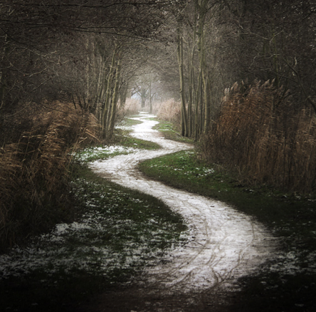 The Heart Of Struggle: The Leadership's Journeyhttp://www.lollydaskal.com/leadership/the-heart-of-struggle-the-leaderships-journey/