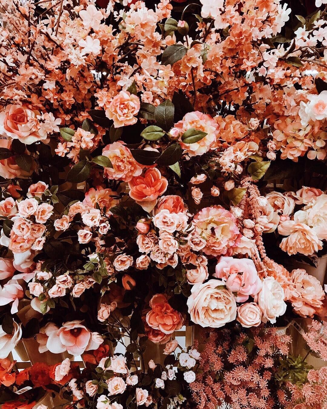Who Else Is Sleeping In Tomorrow How I Feel About This Week Haha It S Been A Whirlwind I T Flower Aesthetic Beautiful Flowers Wallpapers Pretty Flowers