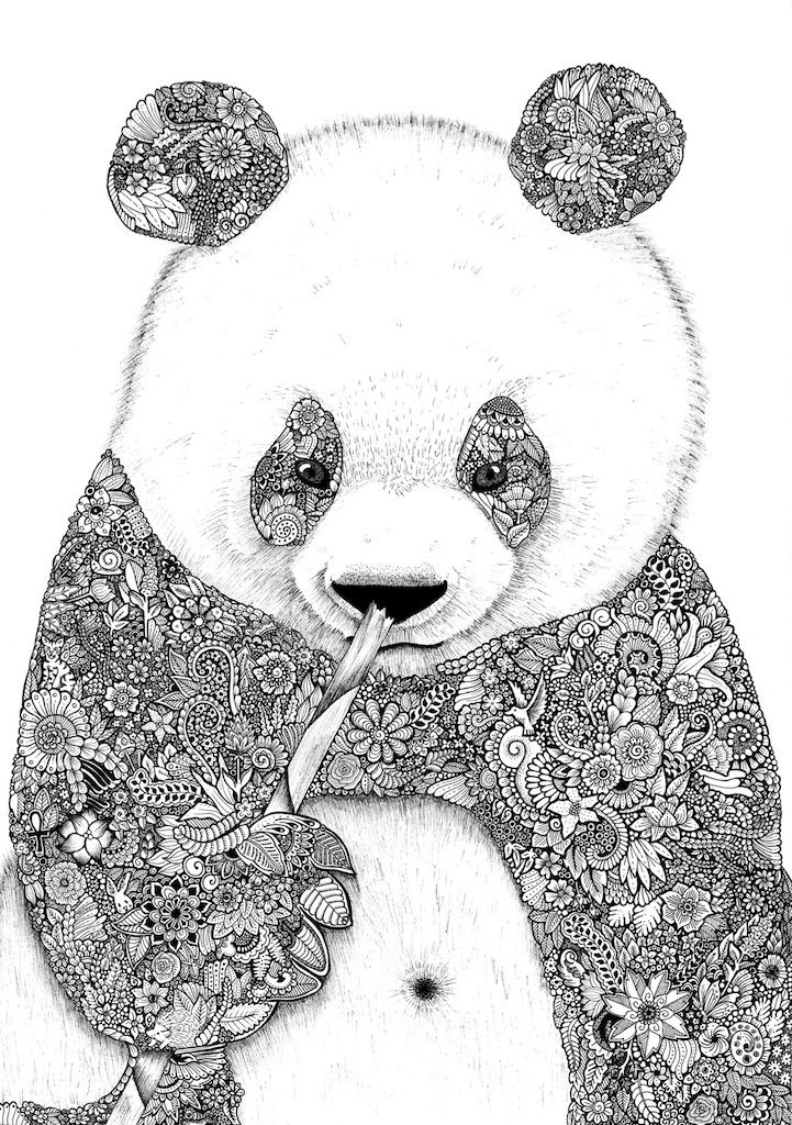 Zentangle panda zentangle pinterest dessin - Coloriage a faire soi meme ...