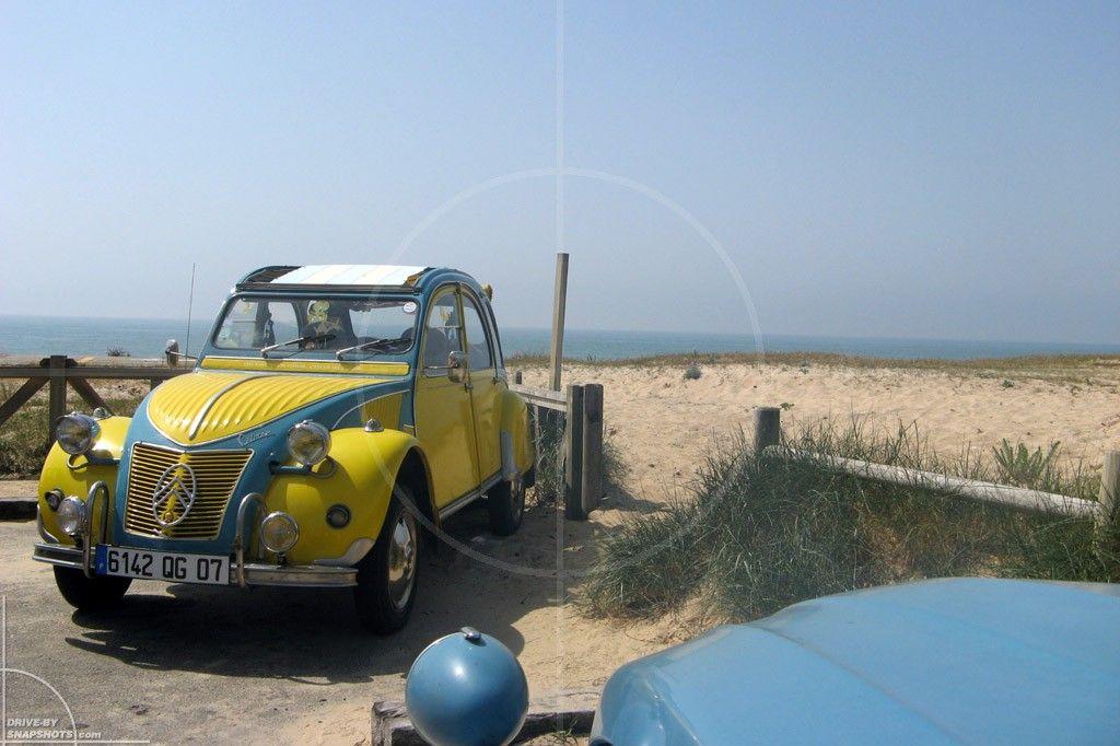 Pin by Hüseyin Kabaçalı on Cv Duck, Car, Vehicles