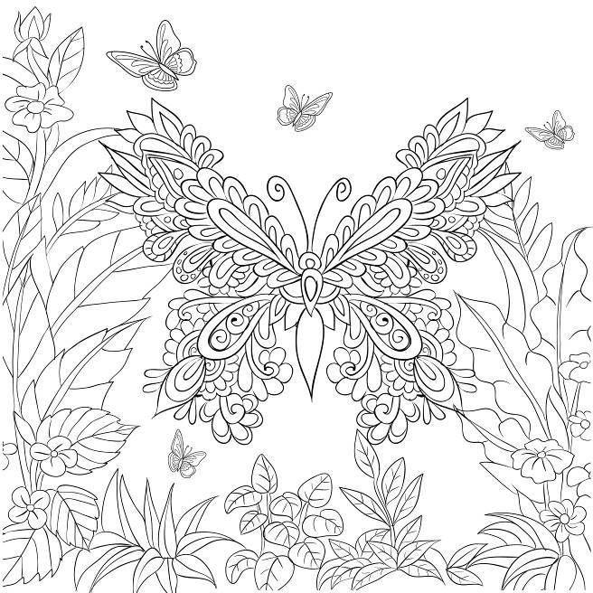 Butterfly Garden: Beautiful Butterflies and Flowers ...
