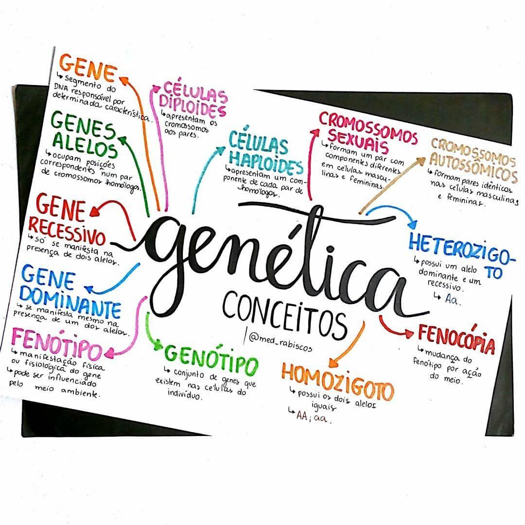 Tudo sobre genetica resumo