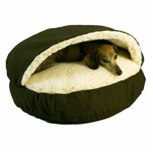 Snoozer Cozy Cave Pet Bed Petsmart Saw Buddy Has One Of These