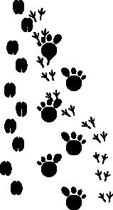 Footprints Clip Art Vector Clip Art Online Royalty Free Amp Public Domain Clip Art Coloring Pages Nature Crafts
