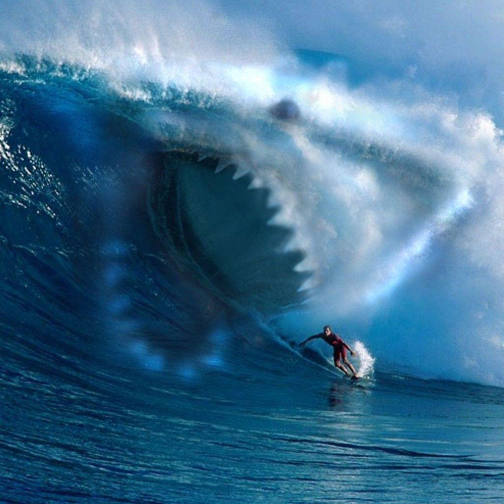 Girls Surfing Wallpaper: Shark Ocean Wave Surfing IPad Wallpaper HD