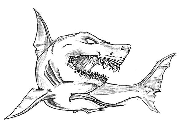 shark jaws sketch coloring pages  best place to color in