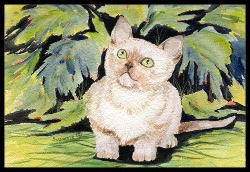 Burmese Cat Non Slip Indoor Door Mat Indoor Door Mats Outdoor