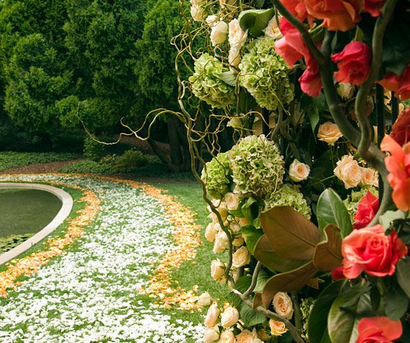 A Walkway Of Orange And White Rose Petals Leads #wedding