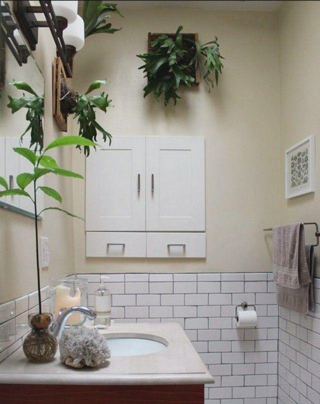 amnager un cadre vgtal dans la salle de bain - Cadre Salle De Bain