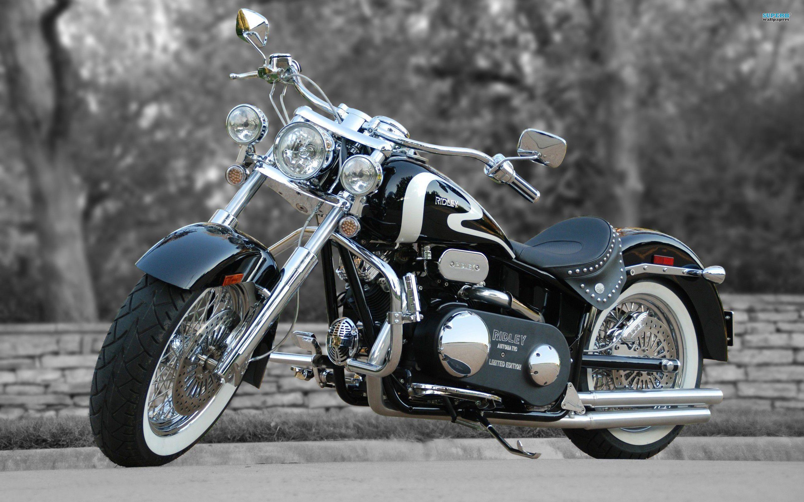 Harley Davidson E Girls Ridley Chopper Motorcycle 897778 2560x1600