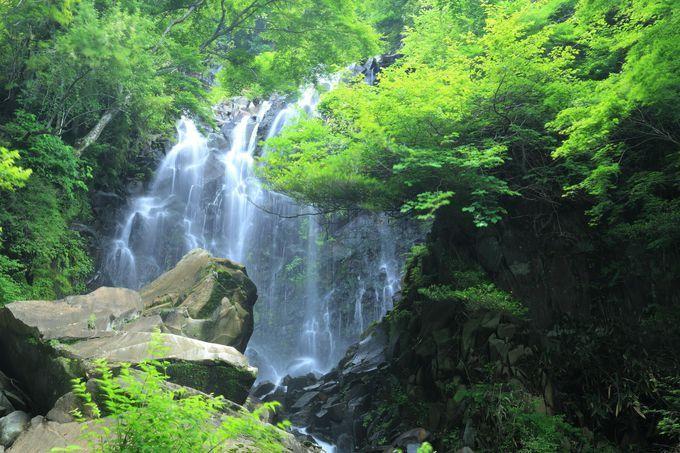 飛龍の滝 神奈川