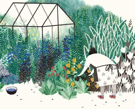Greenhouse Garden Illustrations And Posters Illustration