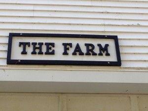 Four important tips for choosing a farm name - Almost a farmerAlmost a farmer