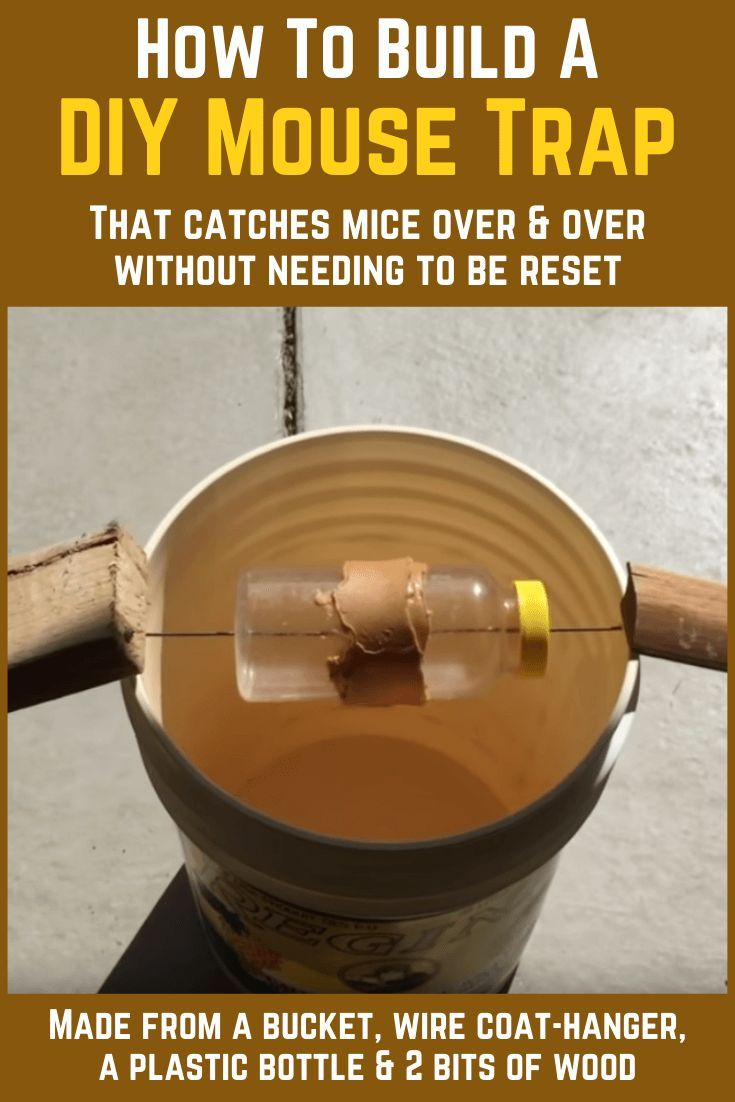 How To Build A DIY Self-Resetting Mouse Trap