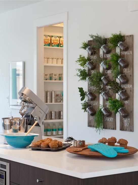 15 Ways To Show Off Your Plants Contemporary Kitchensherb